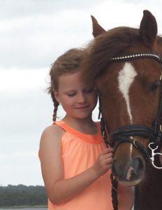 hest-heste-ridning-pony